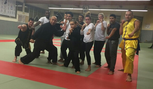 section wushu